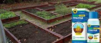 Средство Биограунд от сорняков